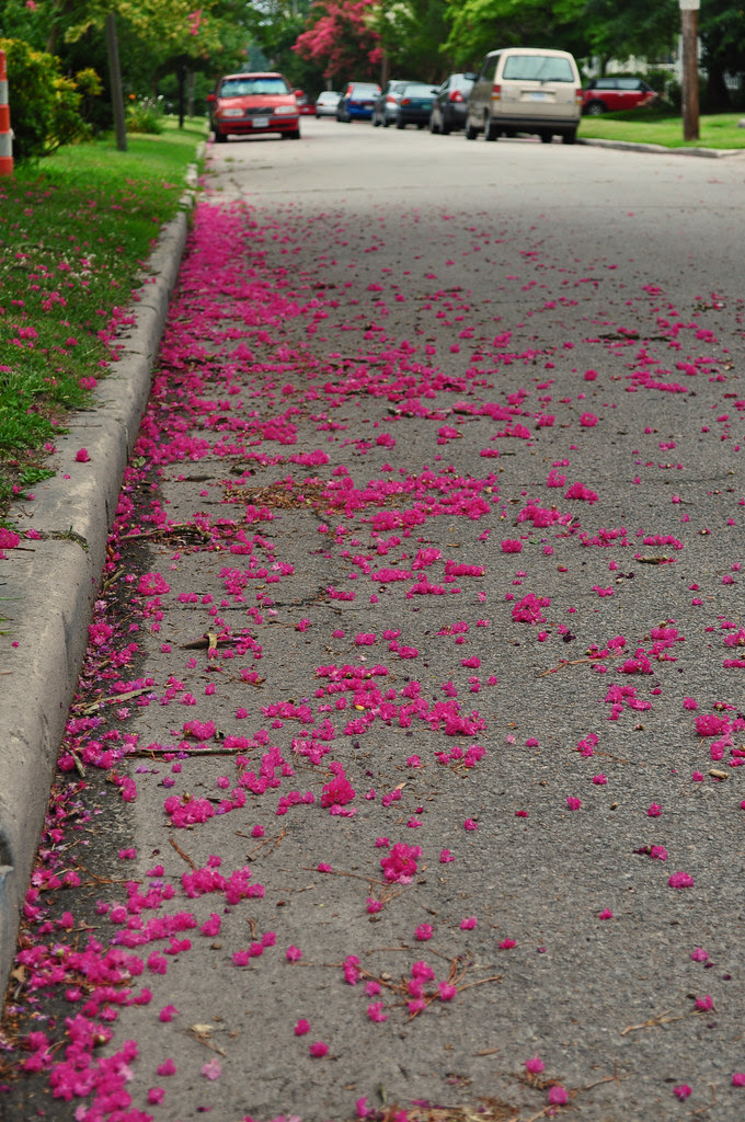Pink in the Gutter