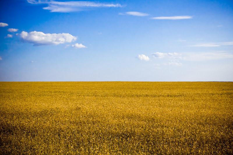 2. Здесь пейзажи, похожие на украинский флаг красота, украина