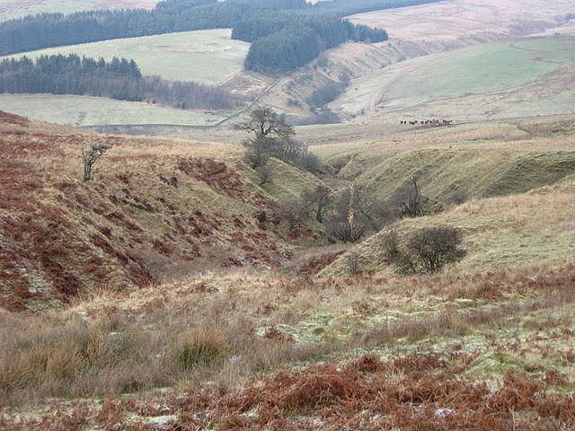 File:An unnamed sike - geograph.org.uk - 636278.jpg