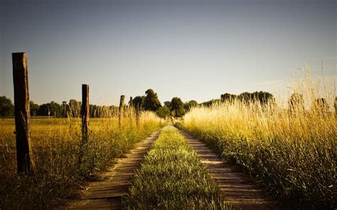 summer road fields fences wallpapers summer road