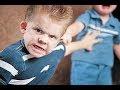 BIRRA INFANTIL e a perda da autoridade dos pais