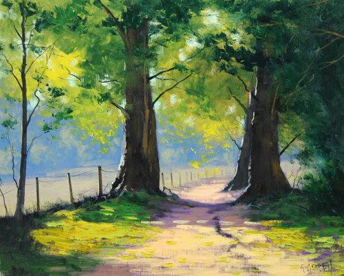 Summer oaks by Graham Gercken