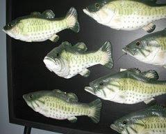 talking fish by Scott Brooks
