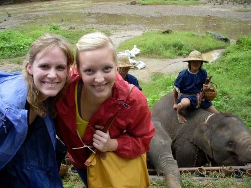 yay elefantes