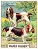 gilbert chiens005