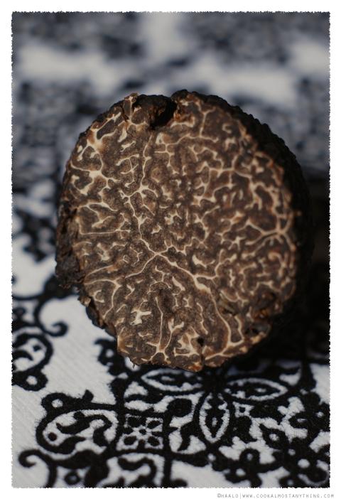 black truffle© by Haalo