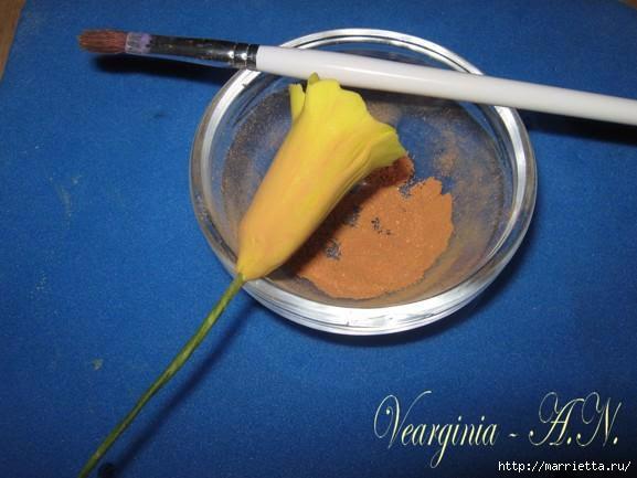 Лепка нарциссов из сахарной мастики и холодного фарфора (14) (577x433, 113Kb)