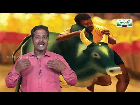 யாமறிந்த மொழிகளிலே Std11 தமிழ் வாடிவாசல் Kalvi TV