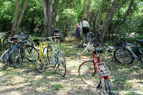 Urban Farm Bicycle Tour bikes