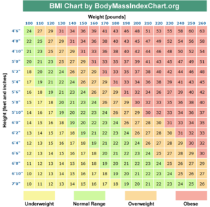 measuring body fat percentage on scale