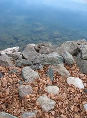 leaves-rocks-lake