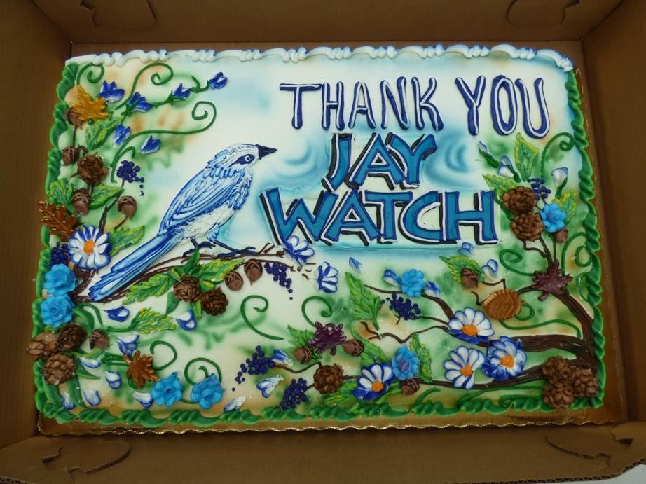 Jay Watch Cake