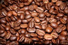 Descubriendo la Ruta del Café, Granos de Café ...