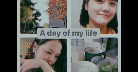 A Day Of My Life | Cuộc Sống Thường Ngày của Ánh | Sunny's Colour