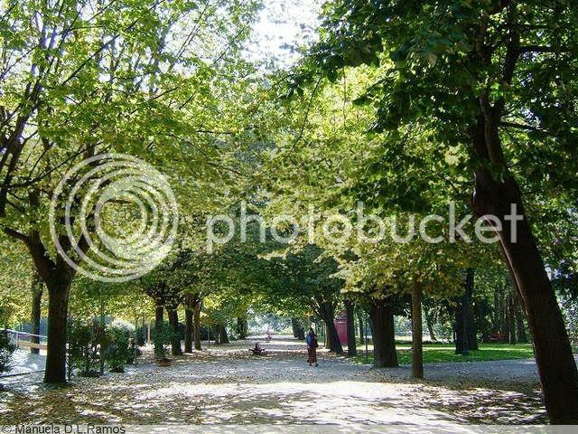 Avenida das Tilias em Outubro