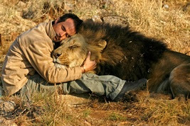 Image result for lion kevin pix