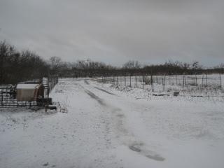 December 2015 Snow 4