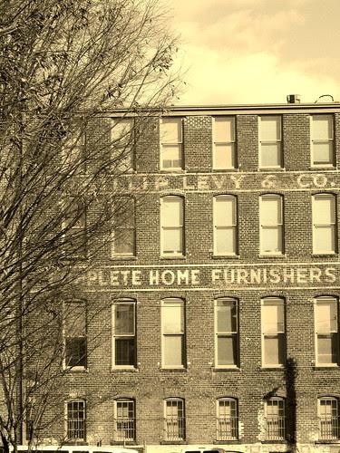 Levy & Company