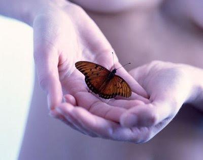 borboleta+e+maos