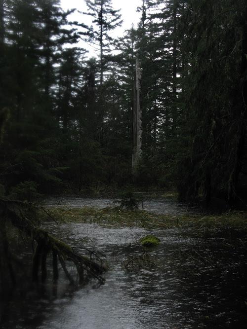 Son-i-Hat Creek floods near Kasaan Totem Park, Kasaan, Alaska