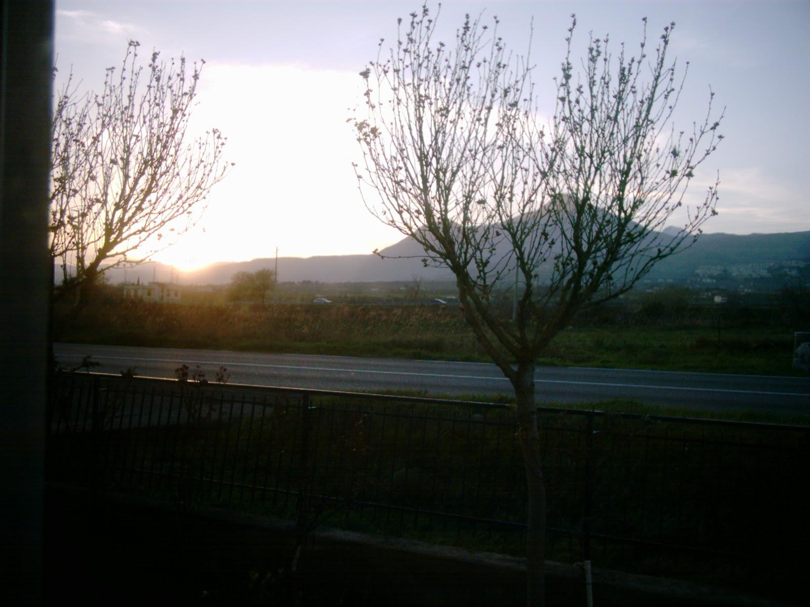 ▐  Il sole sta tramontando a marzo▐