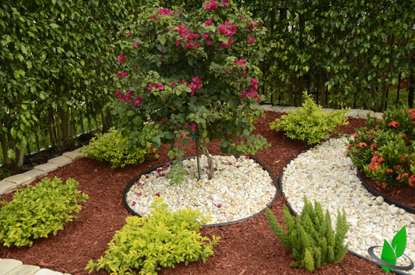 Design Plan Backyard Landscaping Miami