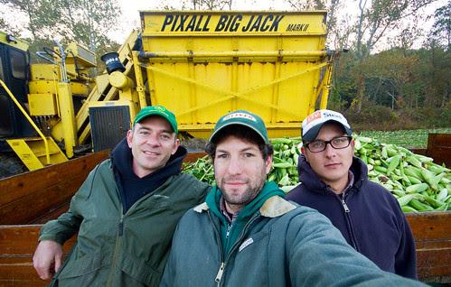 Corn Crew