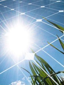 Sustainability models need green procurement