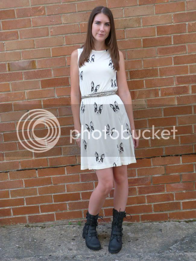 Boston Dog Dress
