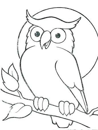 680 Gambar Sketsa Kolase Burung Hantu Gratis Terbaik Kumpulan