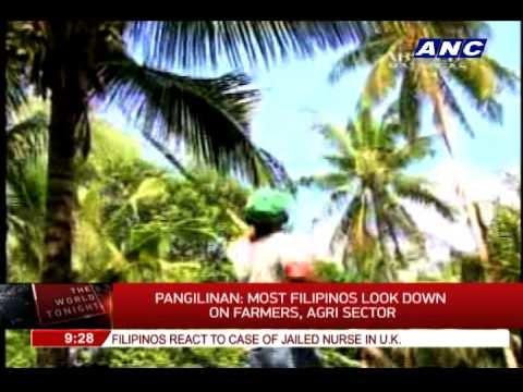 The Average Age of The Filipino Farmer is 57