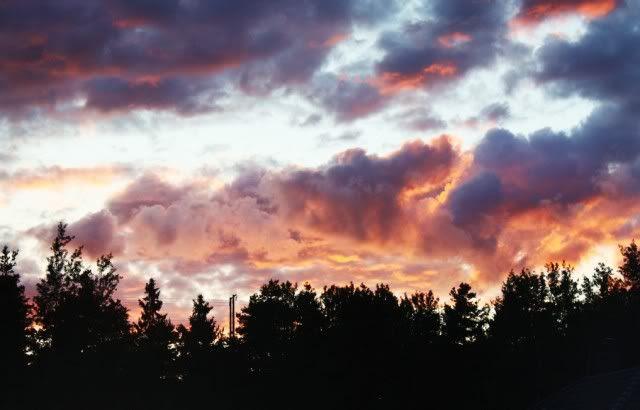 My Sky.. 3-10-10