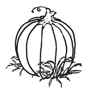 Pumpkin Black And White Black And White Pumpkin Clipart Clipart
