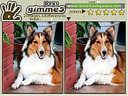 Jogar Gimme 5 dogs Jogos