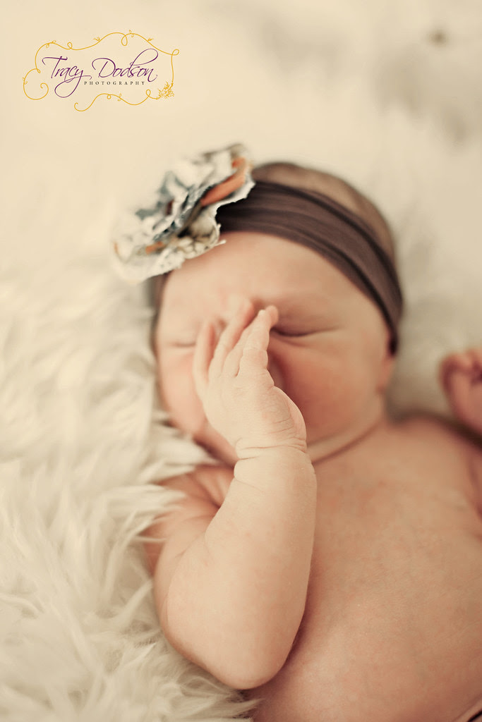 Newborn | Tracy Dodson Photography