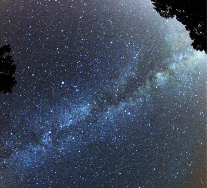 File:Perseid Meteor.jpg