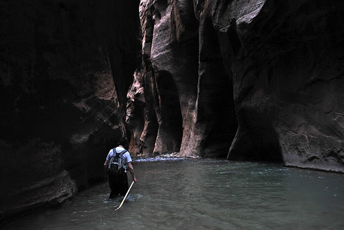 Dark recesses of the canyon