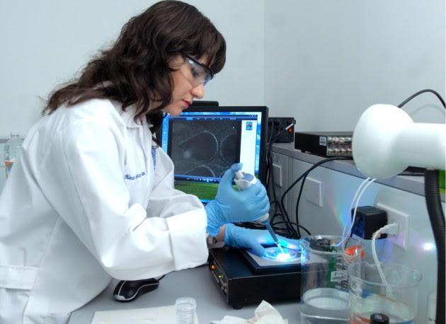Mujer investigadora