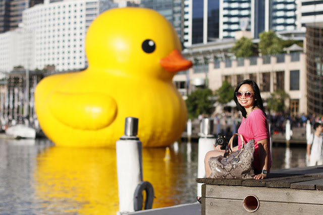 Giant Rubber Duck in Sydney