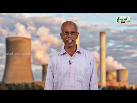 NEET  Zoology விலங்கியல் சுற்றுச்சூழல் இடர்பாடுகள்  Kalvi TV