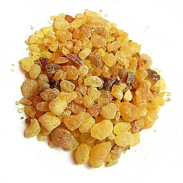 File:Olibanum resin.jpg