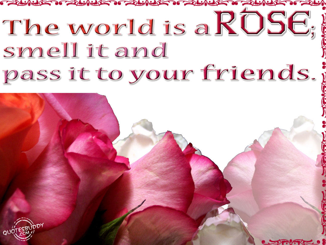 The World Is A Rosesmell It And Pass It To Your Friends Flower
