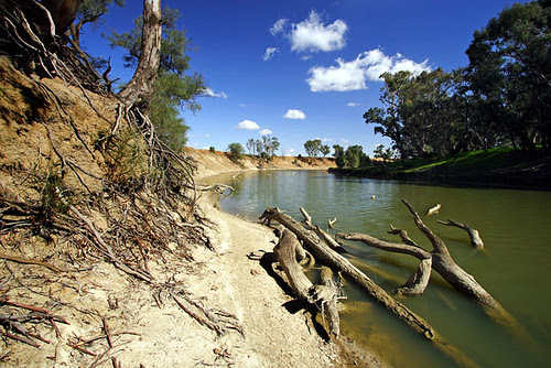 Murrumbidgee River, Hay, New South Wales, Australia, The Long Paddock IMG_5985_Hay