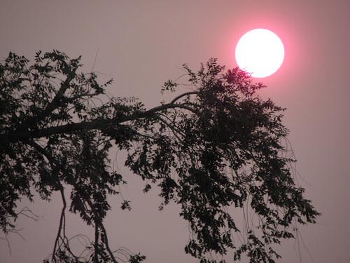 June 8th--Sunset