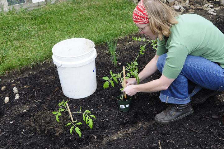 Gardenatoz Planting Garden A To Z