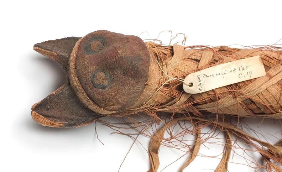 Μούμια αιγυπτιακής γάτας. Φωτ.: Μουσείο Φυσικής Ιστορίας Λονδίνου.