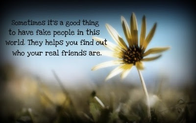 Fake People In This World Friendship Quote Quotespicturescom