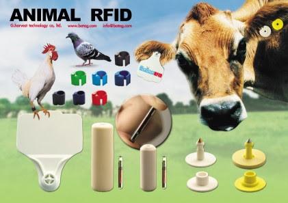 http://foodfreedom.files.wordpress.com/2009/07/animal-rfid-tag.jpg