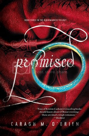 promised-book-review