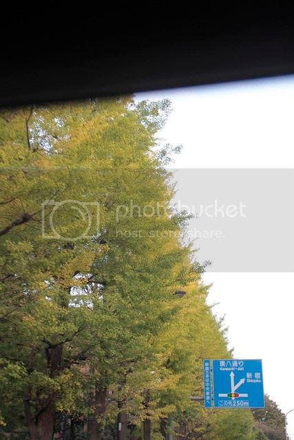 photo _MG_7333_zpsb5ytpzyk.jpg